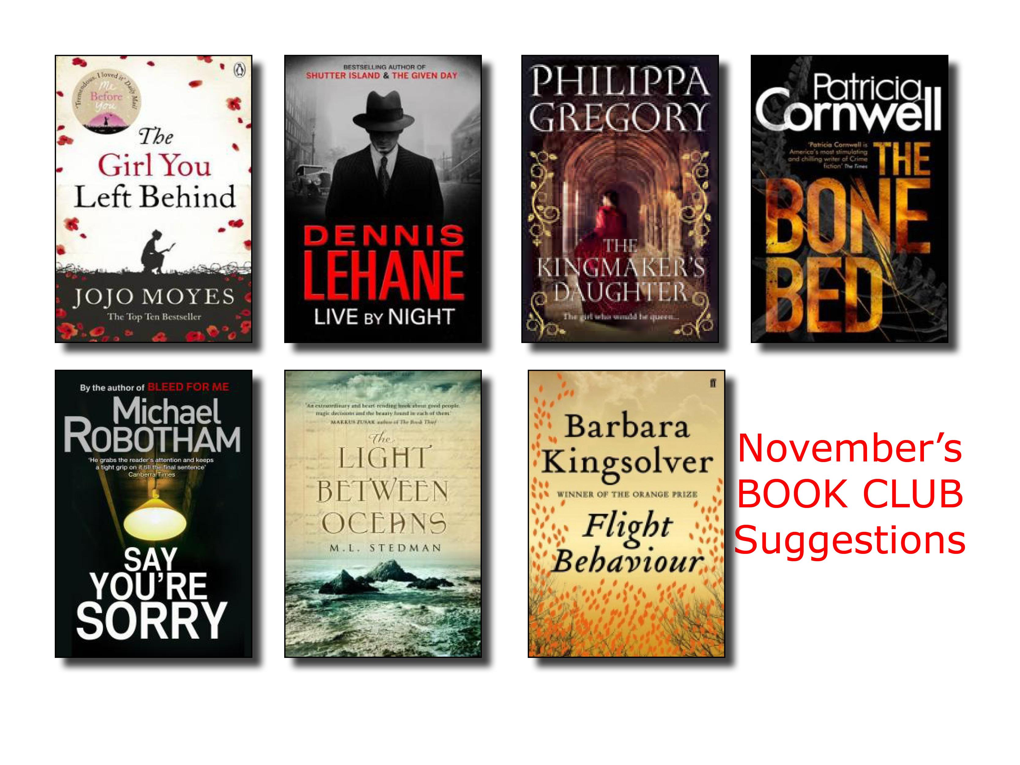November Book Club Suggestions