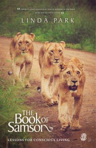the-book-of-samson-linda-park
